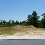 jo and richard smith lot in rolesville